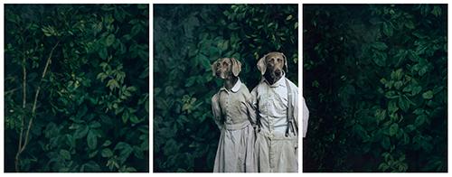 William Wegman, Hansel und Gretel, 2007, pigment print, 86,36x91,44 cm © William Wegman, Courtesy Sperone Westwater Gallery