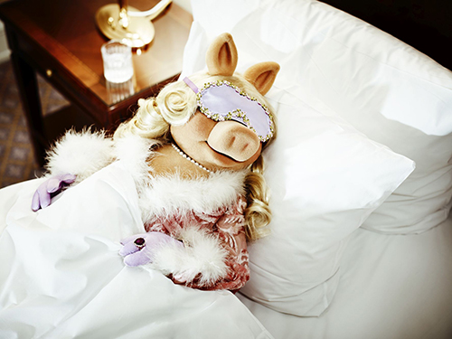 Miss Piggy at the Ritz, 2012 © Anatol Kotte