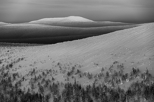 05-Die weite Tundra im Ural Gebirge - 2013 © Klaus Fengler