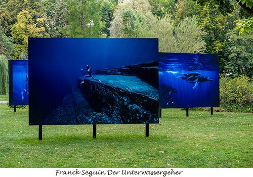 10a Franck Seguin Der Unterwassergeher