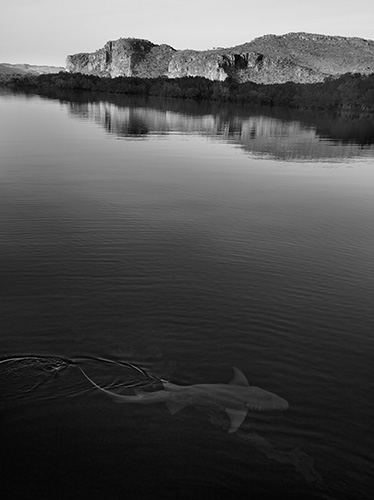 JR 1908_Belong_Day_5_Morning_Anchor_Mangrove_Swamps_018_112477_RT1_V1 copy