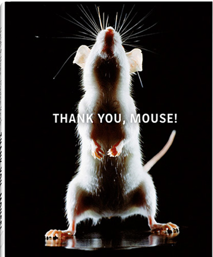 L thank_you_mouse cover