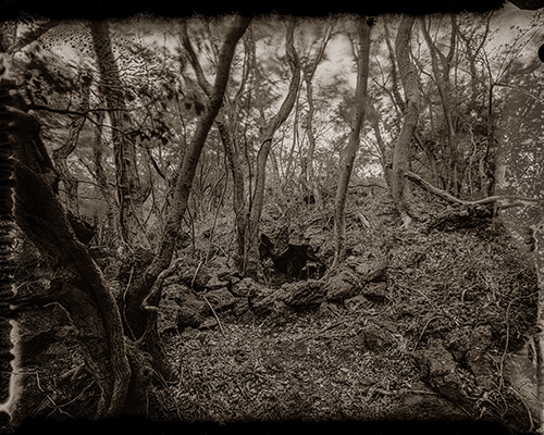 Loba 05_© Namhun Sung_Red Island