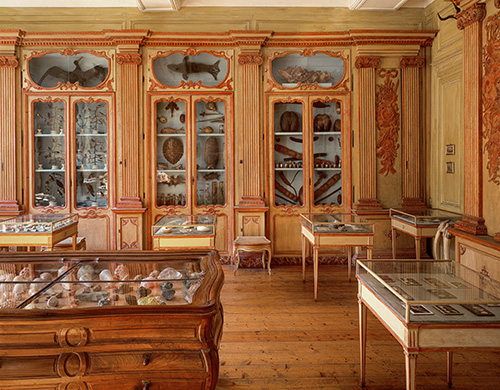 xl_listri_cabinet_of_curiosities_p290