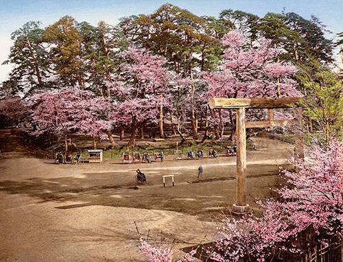 FP 342A_JAPAN_1900_XL_01187