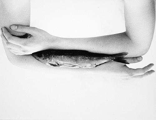 Hirmer Abb. 04_Marielis Seyler_aus dem Zyklus Körperfische:IV
