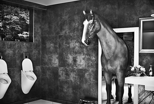 SEEING A MAN ABOUT A HORSE © Lenny Kravitz